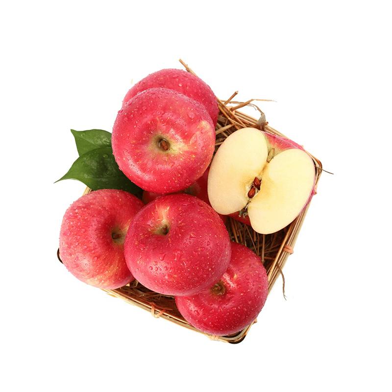 【美域高】洛川苹果