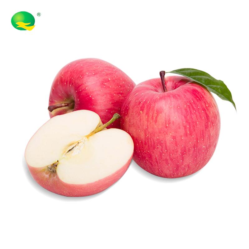 旭峥果蔬  有机苹果净重5斤中果12枚