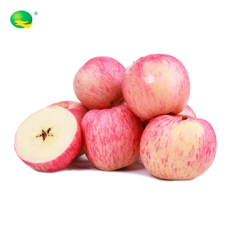 旭峥果蔬  有机苹果净重5斤大果9枚