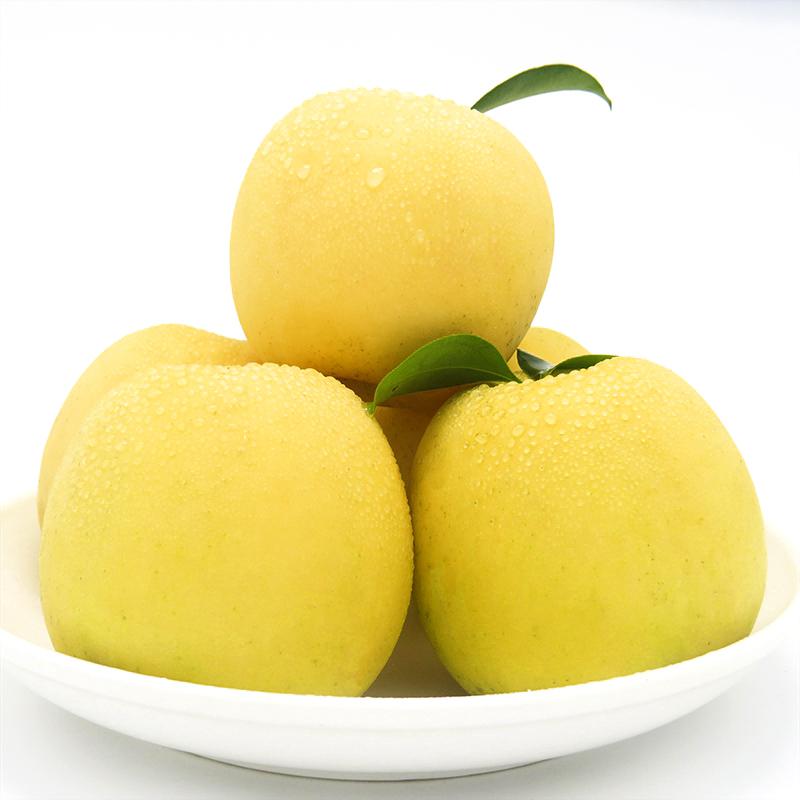 瑞雪苹果16枚装(10斤)